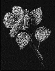 Fersman Plate XVI: Diamond Rose Brooch, 1820-30 No. 21