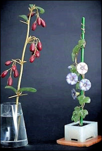 Faberge Flowers: Barberry Bush Sprig & Morning Glory